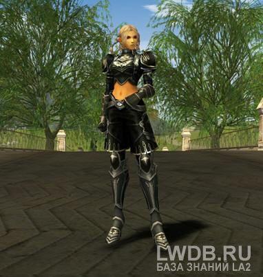 Запечатанный Кожаный Доспех Кристалла Тьмы - Sealed Dark Crystal Leather Armor