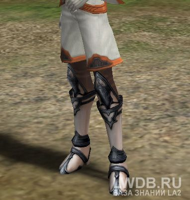 Сапоги Божества - Divine Boots