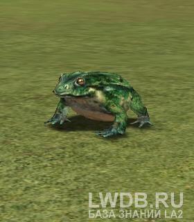 Пойманная Лягушка - Caught Frog