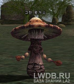 Зеленый Гриб - Green Fungus