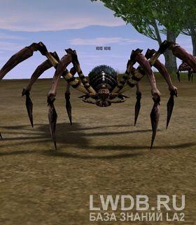 Гигантский Паук - Giant Spider
