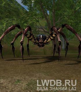 Когтистый Паук - Talon Spider