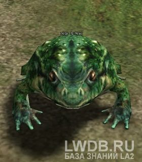 Гигантская Жаба - Giant Toad