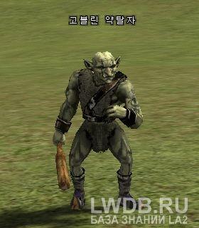 Налетчик Гоблинов - Goblin Raider