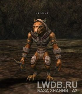 Главарь Крысолюдов Бугл - Boogle Ratman Leader