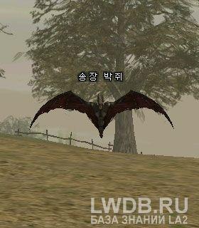 Летучая Мышь Падальщик - Scavenger Bat