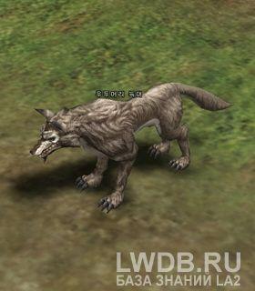 Матерый Волк - Elder Wolf