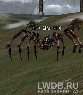 Опасный Паук Кхаши - Kasha Blade Spider