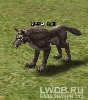 Серый Волк - Gray Wolf