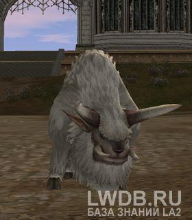 Буйвол Фреи - Freya's Buffalo