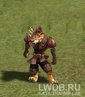 Красноглазый Стрелок - Red Eye Archer