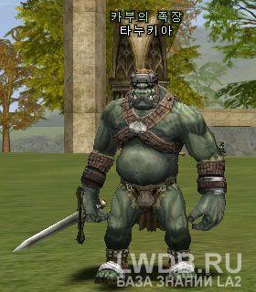 Танукий - Tanukia