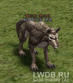 Боевая Гончая Танукия - Tanukia's Warhound
